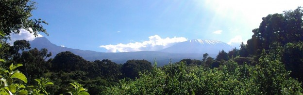10yr Anniversary Kilimanjaro Dirt Road Hash
