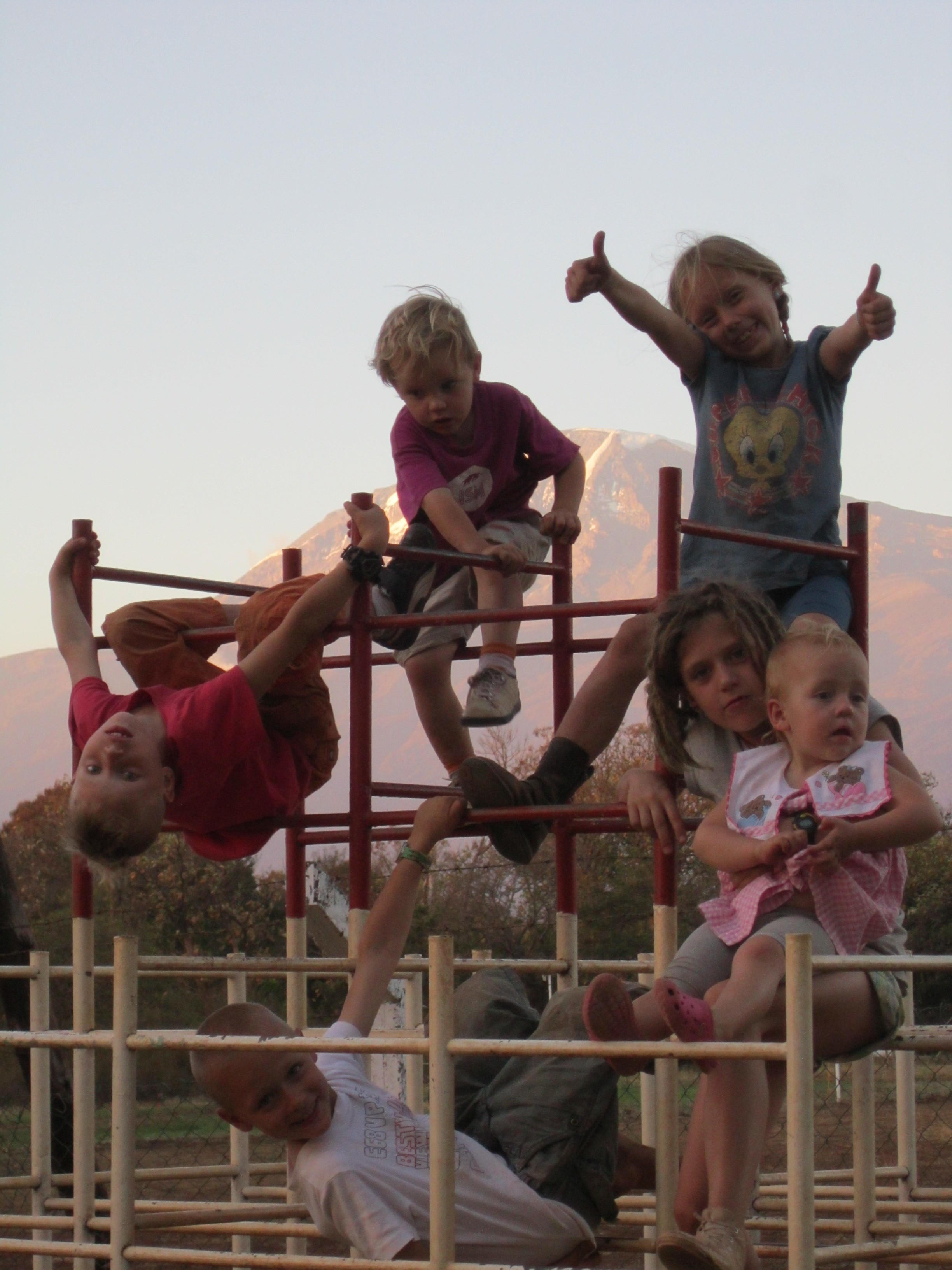 Boven: Hugo, Steven, Doris. Onder: Willem, Ida, Vicky